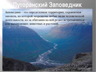 Путоранский Заповедник Заповедник - это определенная территория, охраняемая з