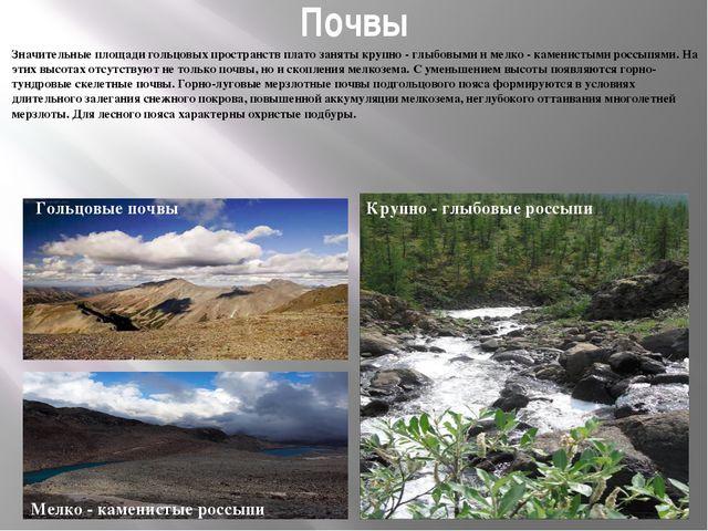 Почвы Значительные площади гольцовых пространств плато заняты крупно - глыбов...