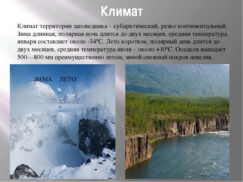 Климат Климат территории заповедника – субарктический, резко континентальный....
