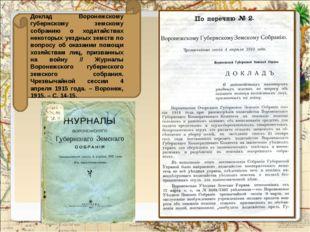 Доклад Воронежскому губернскому земскому собранию о ходатайствах некоторых у