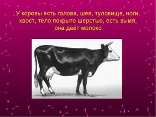 У коровы есть голова, шея, туловище, ноги, хвост, тело покрыто шерстью, есть