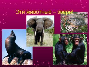 Эти животные – звери!