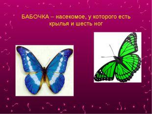 БАБОЧКА – насекомое, у которого есть крылья и шесть ног