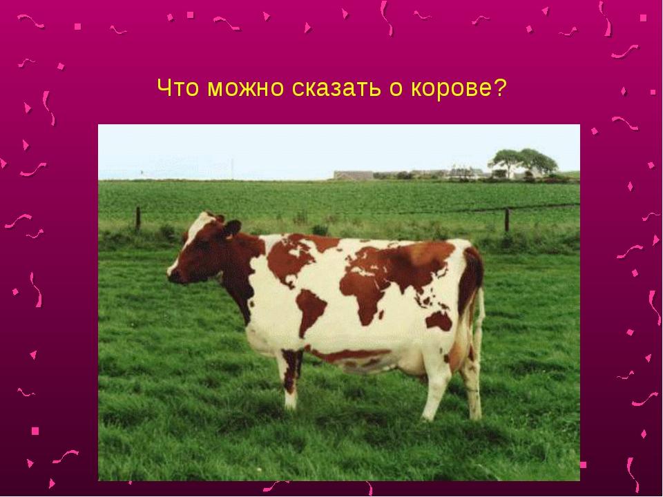 Что можно сказать о корове?