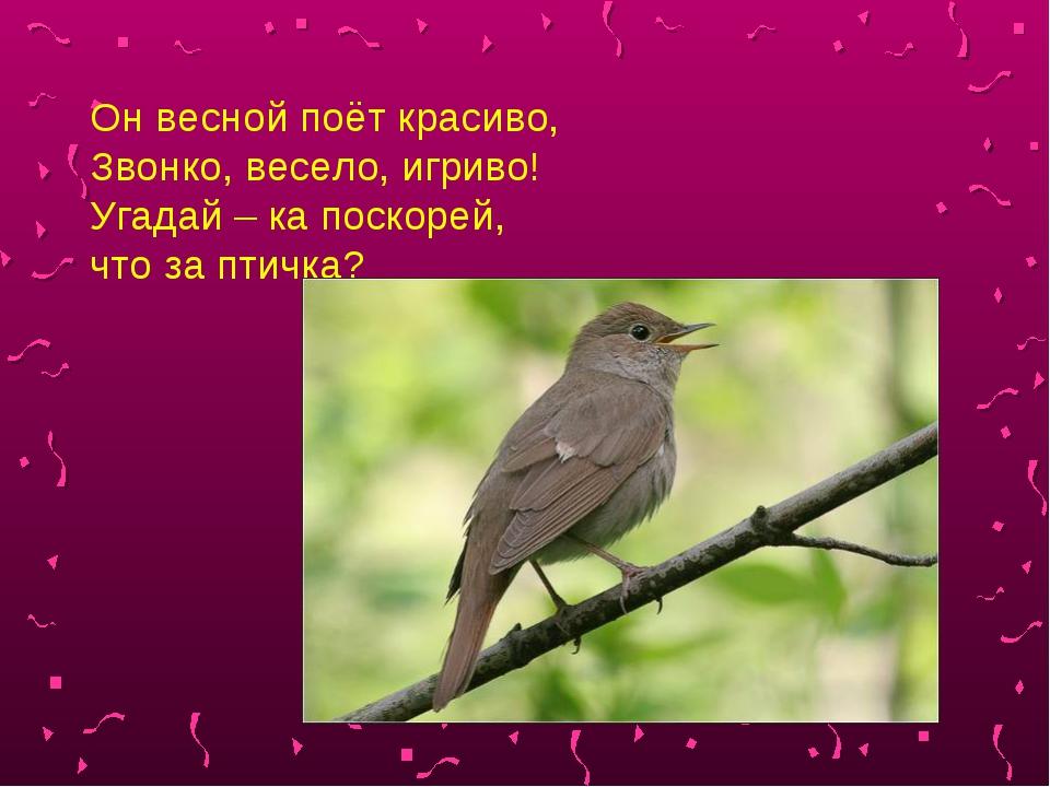 Он весной поёт красиво, Звонко, весело, игриво! Угадай – ка поскорей, что за...