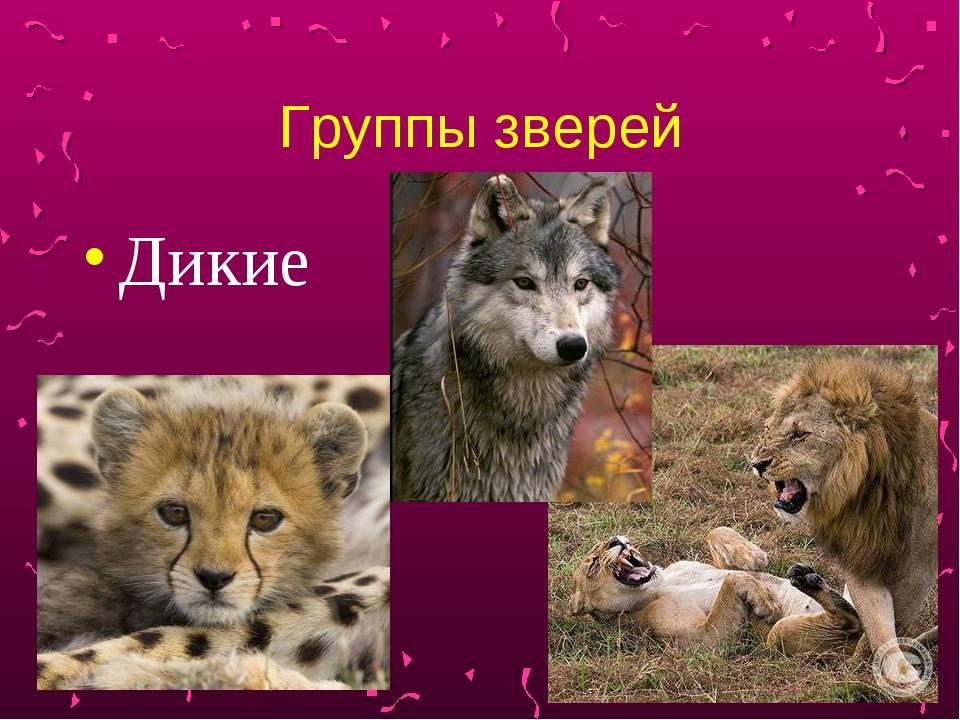 Группы зверей Дикие