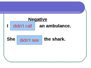 Negative I (to call) an ambulance. She (to see) the shark. didn't call didn'