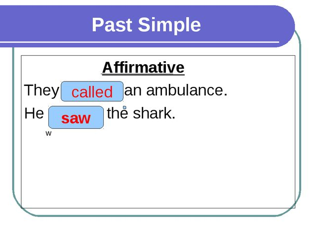 Past Simple Affirmative They (to call) an ambulance. He (to see) the shark....