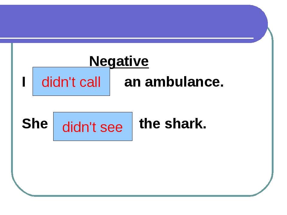 Negative I (to call) an ambulance. She (to see) the shark. didn't call didn'...