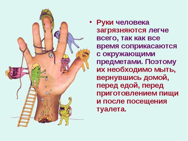 Руки человека загрязняются легче всего, так как все время соприкасаются с окр...