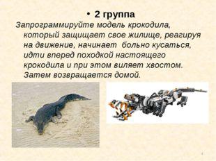 * 2 группа Запрограммируйте модель крокодила, который защищает свое жилище,р