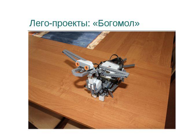 Лего-проекты: «Богомол»