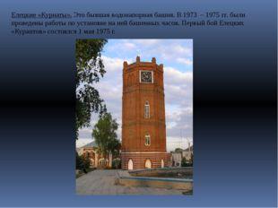 Елецкие «Курнаты». Это бывшая водонапорная башня. В 1973 – 1975 гг. были пров