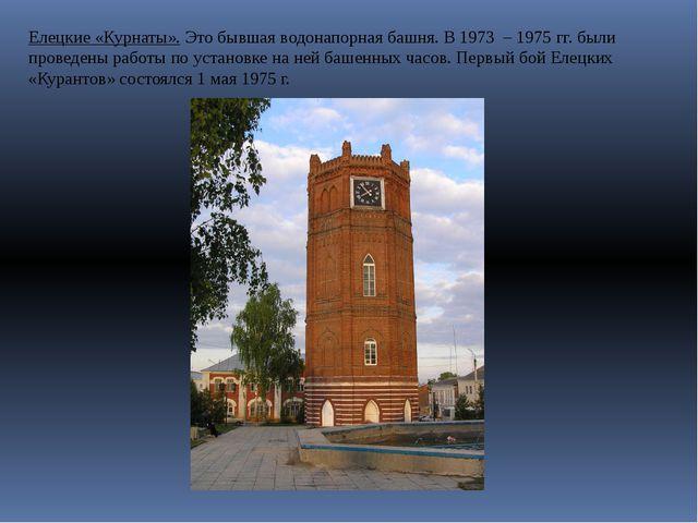 Елецкие «Курнаты». Это бывшая водонапорная башня. В 1973 – 1975 гг. были пров...