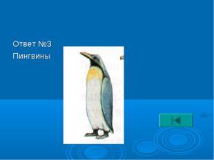 Ответ №3 Пингвины