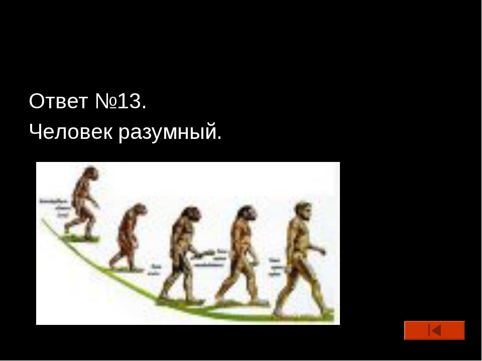 Ответ №13. Человек разумный.