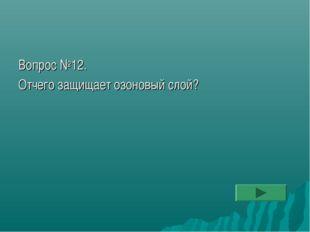 Вопрос №12. Отчего защищает озоновый слой?