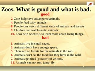 2. Zoos help save endangered animals. 4. People feed baby animals. 8. People