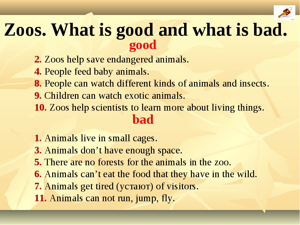 2. Zoos help save endangered animals. 4. People feed baby animals. 8. People...