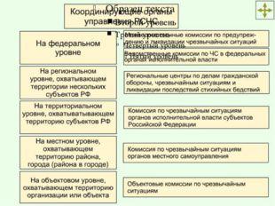 Постоянно действующие органы управления РСЧС Рабочими органами комиссий по чр