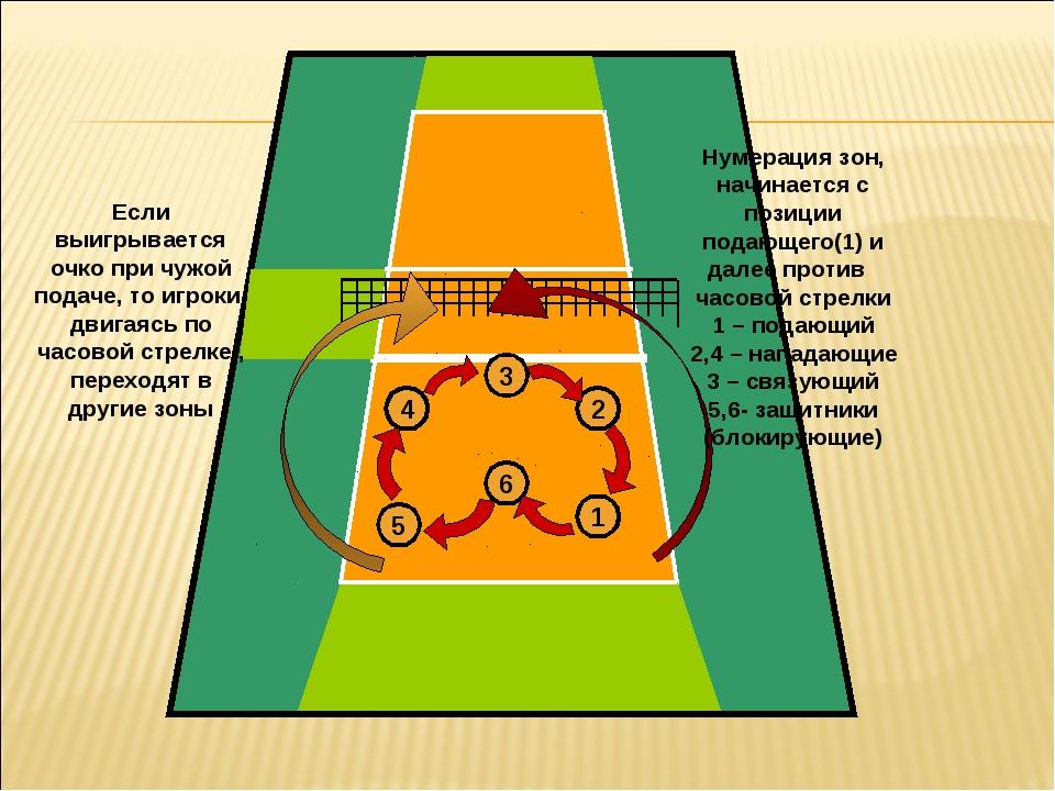 царских правила волейбола с картинками больше