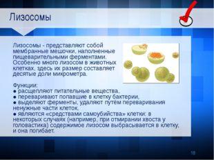 Лизосомы Лизосомы - представляют собой мембранные мешочки, наполненные пищев