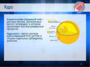 Кариоплазма (ядерный сок) – раствор белков, нуклеиновых кислот, углеводов, в