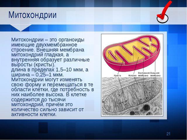 Митохондрии Митохондрии – это органоиды имеющие двухмембранное строение. Вне...