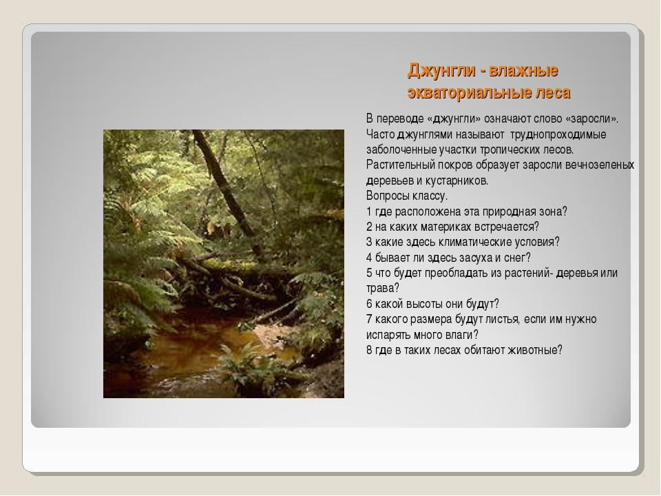 Джунгли - влажные экваториальные леса В переводе «джунгли» означают слово «за...