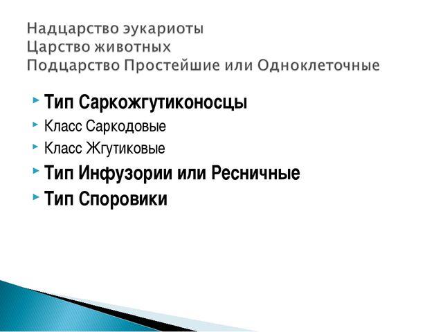 Тип Саркожгутиконосцы Класс Саркодовые Класс Жгутиковые Тип Инфузории или Рес...