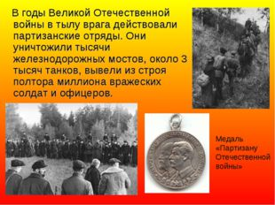 В годы Великой Отечественной войны в тылу врага действовали партизанские отр