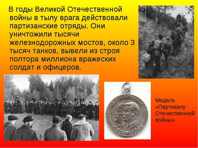 В годы Великой Отечественной войны в тылу врага действовали партизанские отр...