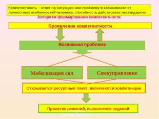 Проявление компетентности Возникшая проблема Открывается ресурсный пакет, вкл