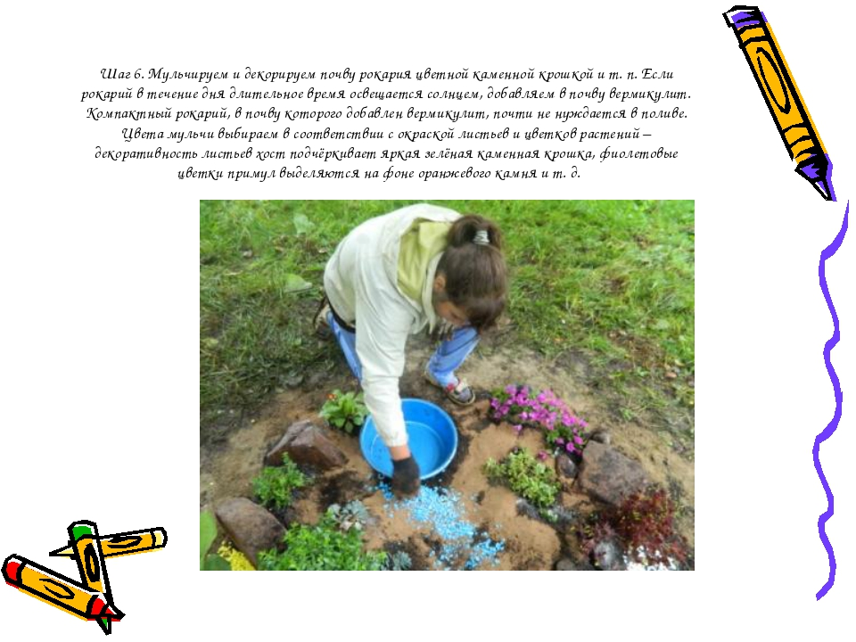 Шаг 6. Мульчируем и декорируем почву рокария цветной каменной крошкой и т. п....