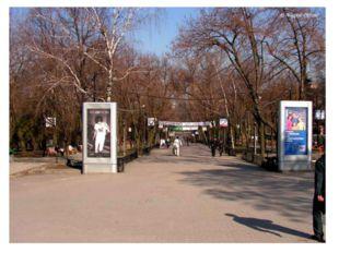 Ростов-на-Дону очень зелен, здесь великое множество парков и садов. К наиболе