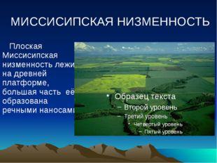 МИССИСИПСКАЯ НИЗМЕННОСТЬ Плоская Миссисипская низменность лежит на древней пл