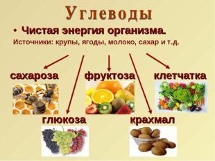 Чистая энергия организма. Источники: крупы, ягоды, молоко, сахар и т.д. сахар