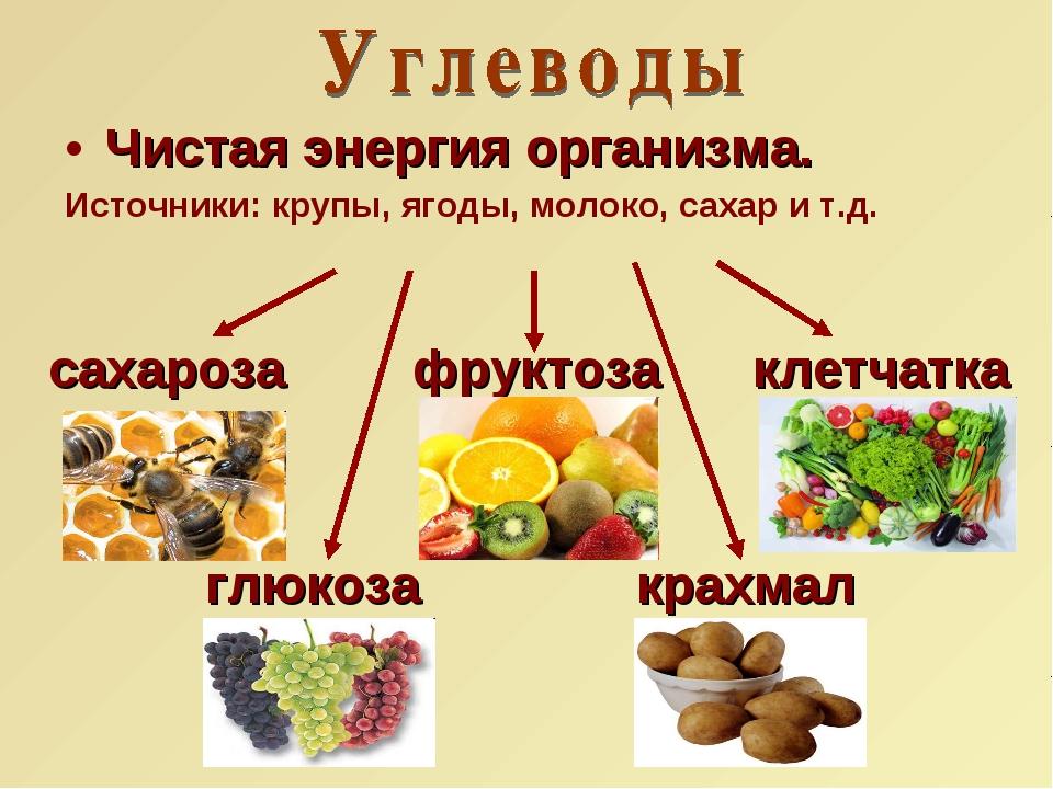 Чистая энергия организма. Источники: крупы, ягоды, молоко, сахар и т.д. сахар...