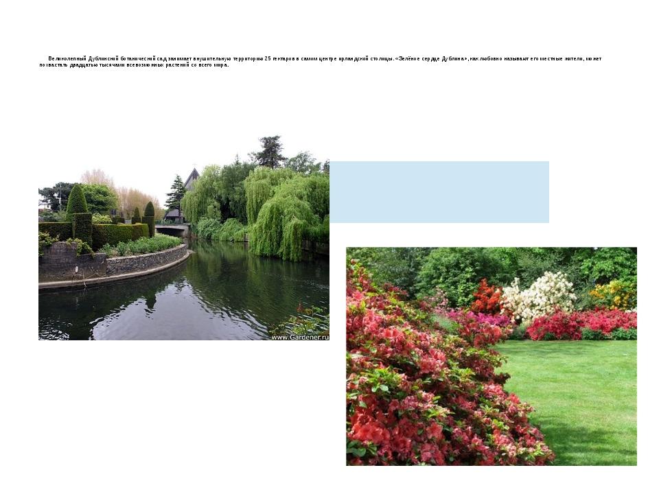 Великолепный Дублинский ботанический сад занимает внушительную территорию 25...