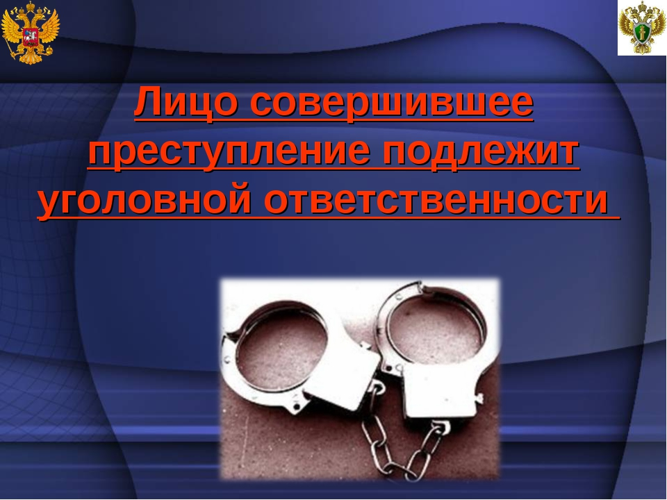 Лицо совершившее преступление подлежит уголовной ответственности