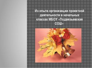 Из опыта организации проектной деятельности в начальных классах МБОУ «Подвязь