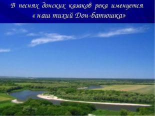 В песнях донских казаков река именуется « наш тихий Дон-батюшка»