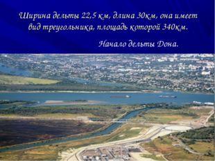 Ширина дельты 22,5 км, длина 30км, она имеет вид треугольника, площадь которо