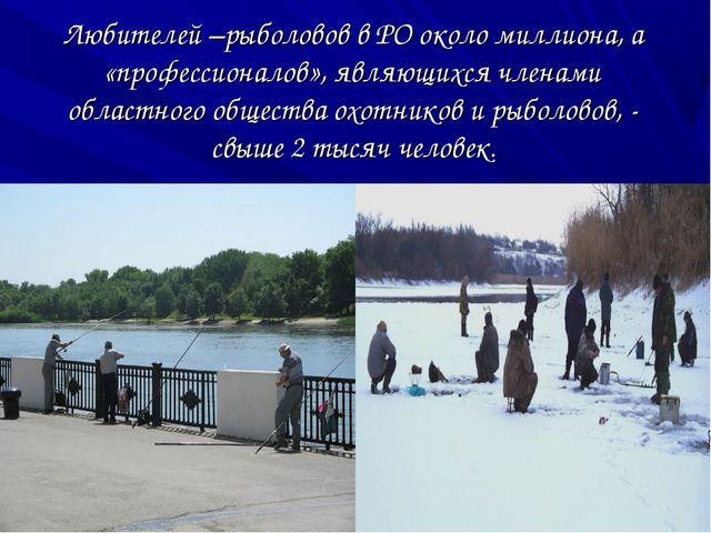 Любителей –рыболовов в РО около миллиона, а «профессионалов», являющихся член...