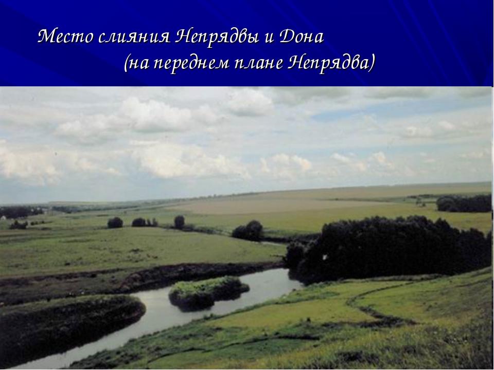 Место слияния Непрядвы и Дона (на переднем плане Непрядва)