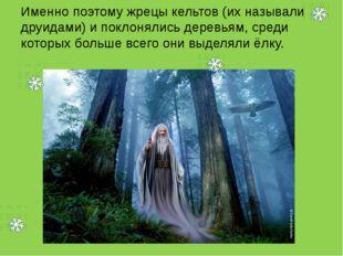 Именно поэтому жрецы кельтов (их называли друидами) и поклонялись деревьям, с