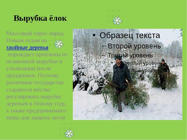Вырубка ёлок Массовый спрос перед Новым годом нахвойные деревьяпорождает пр...