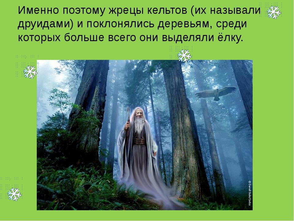 Именно поэтому жрецы кельтов (их называли друидами) и поклонялись деревьям, с...