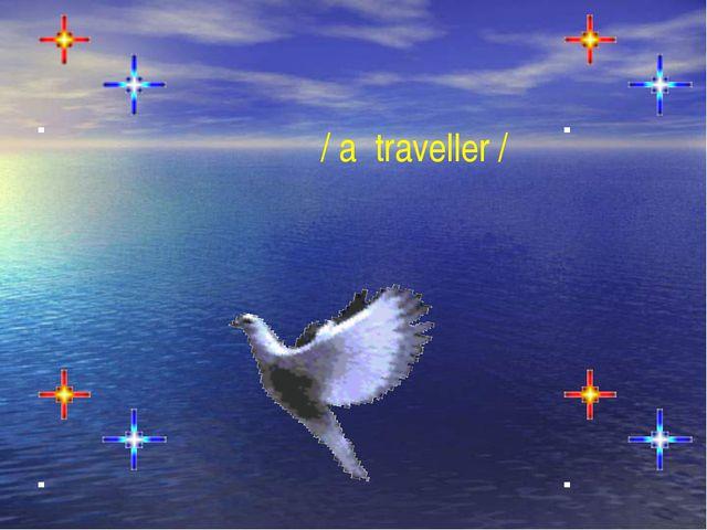 / a traveller /
