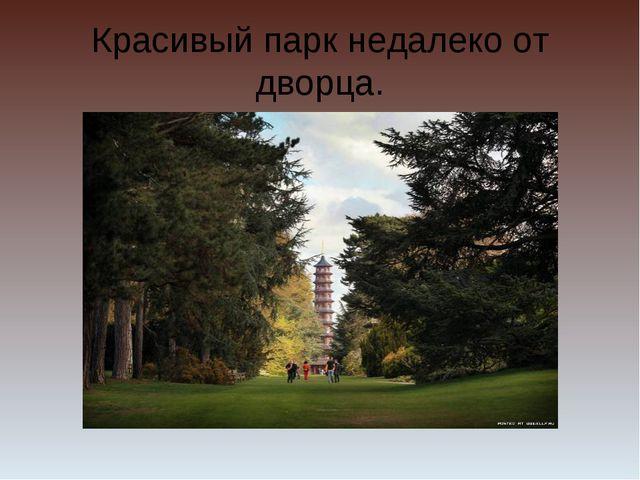 Красивый парк недалеко от дворца.